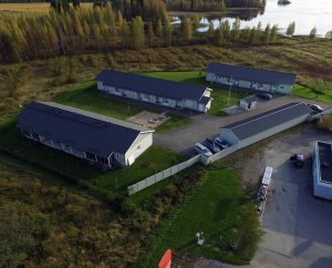 As Oy Reisjärven Salmenranta
